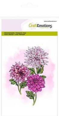 CraftEmotions clearstamps A6 - dahlia