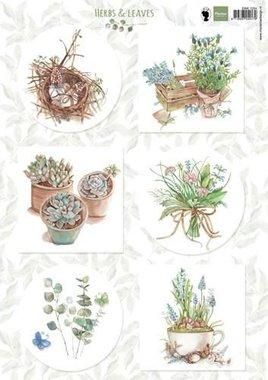 Marianne Design 3D Knipvellen Herbs & leaves 1 EWK1254