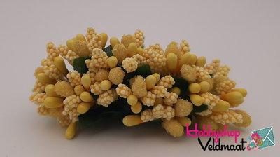 Hobbyshop Veldmaat Bloemen Geel 1 bosje