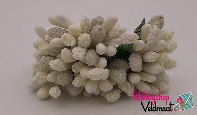 Hobbyshop Veldmaat Bloemen Gebroken Wit 1 bosje