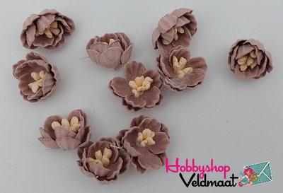 Hobbyshop Veldmaat Bloemen Klein Antiek Licht Bruin 10 stuks