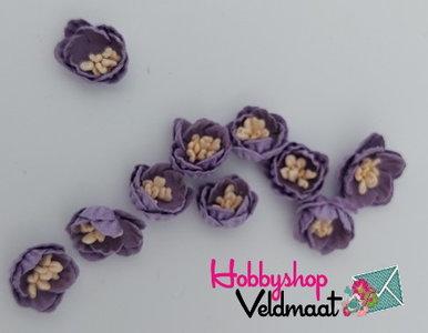 Hobbyshop Veldmaat Bloemen Klein Paars 10 stuks